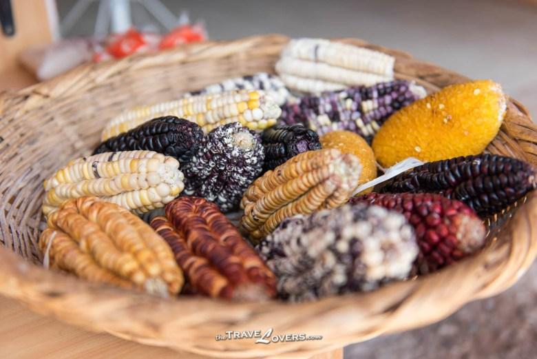 秘魯有很多不同種類的玉米,有一些看起來樣子很奇怪,那個好像結晶了的玉米,很難相信它是可以食用的。